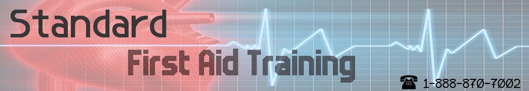 Standard First Aid Training